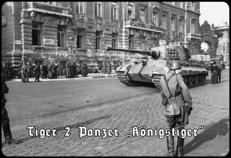 Blechschild Tiger 2 Panzer Königstiger Metallschild Wanddeko 20x30 tin sign