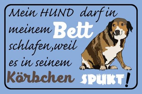 Blechschild Spruch Hundekörbchen spukt Metallschild Wanddeko 20x30 cm tin sign