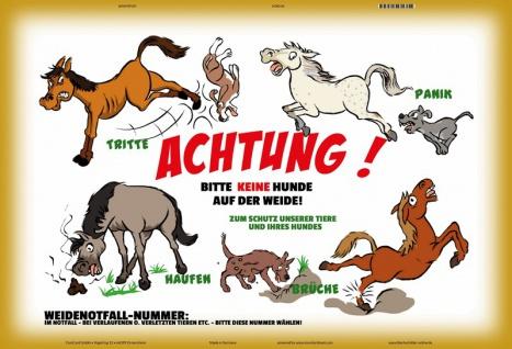 Blechschild Achtung keine Hunde auf Weide (Pferd) Metallschild 20x30 tin sign
