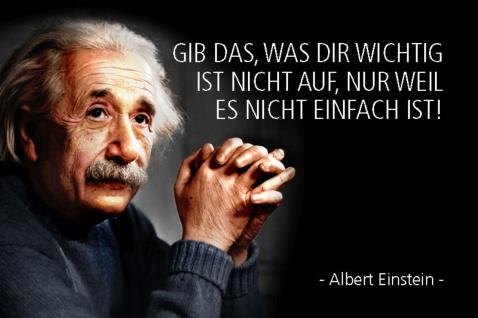 Blechschild Spruch Einstein Gib Das was dir wichtig ist Metallschild Wanddeko 20x30 cm tin sign
