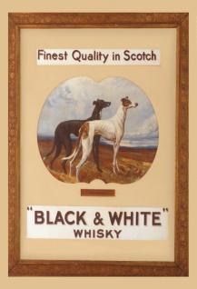 Black & White Scotch whisky windhund alkohol blechschild