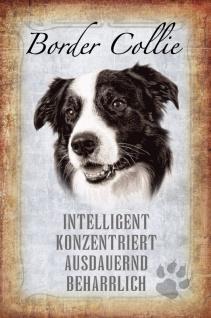 Hunde Steckbrief: Border Collie - intelligent, konzentriert, ausdauernd, beharrlich Blechschild 20x30 cm