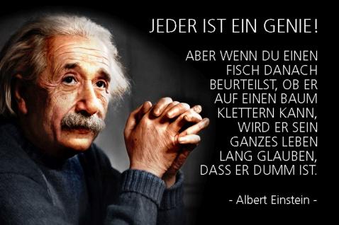 Blechschild Spruch Einstein Jeder ist ein Genie Metallschild Wanddeko 20x30 cm tin sign