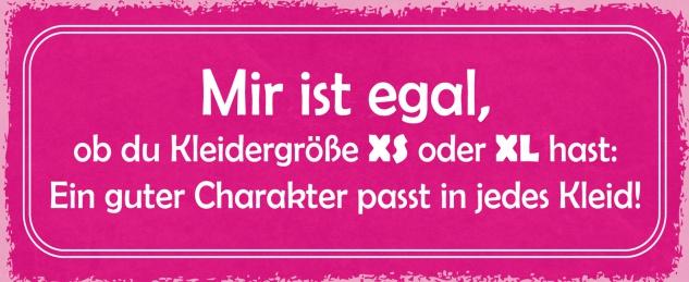 Blechschild Spruch Mir ist egal, ob du Kleidergröße XS oder XL hast: Ein guter Charakter passt in jedes Kleid Metallschild 27x10 Deko tin sign
