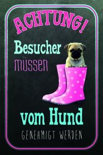 Hund Mops Mit Gunstig Sicher Kaufen Bei Yatego