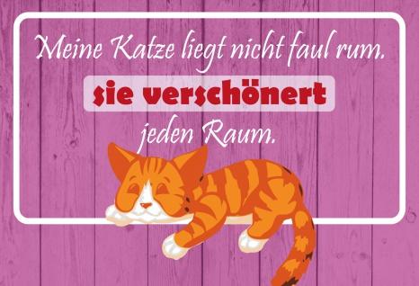 Blechschild Spruch Meine Katze verschönert jeden Raum Metallschild 20x30 Deko