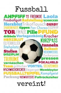 Blechschild Spruch Fußball vereint Metallschild 20x30 cm Wanddeko tin sign