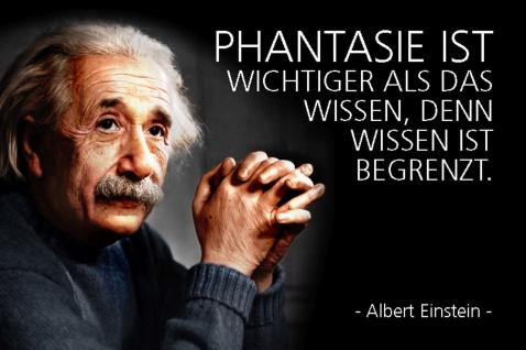 Blechschild Spruch Einstein Phantasie begrenzt Metallschild Wanddeko 20x30 cm tin sign