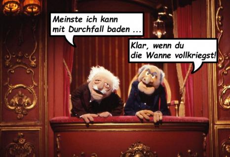 Blechschild Spruch Waldorf & Statler mit Durchfall baden? Metallschild Wanddeko 20x30 cm tin sign