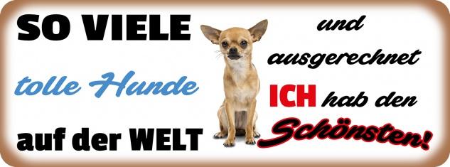 Blechschild Spruch so vielen tolle Hunde auf der Welt Metallschild 27x10 cm Wanddeko tin sign