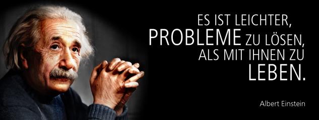 Blechschild Spruch Es ist leichter, Probleme zu lösen, als mit ihnen zu leben. -Einstein- Metallschild 27x10 cm Wanddeko tin sign
