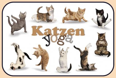 Schatzmix Blechschild Katzen Yoga 2 Metallschild 20x30 cm Wanddeko tin sign