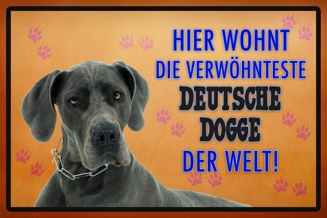 Hier wohnt die Verwöhnteste deutsch dogge der welt blechchild