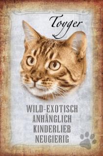Katze Steckbrief: Toyger - wild-exotisch, anhänglich, kinderlieb, neugierig Blechschild 20x30 cm