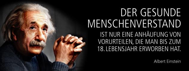 Blechschild Spruch Der gesunde Menschenverstand ist nur eine Anhäufung von Vorurteilen, die man bis zum 18. Lebensjahr erworben hat. -Einstein-Metallschild 27x10 cm Wanddeko tin sign