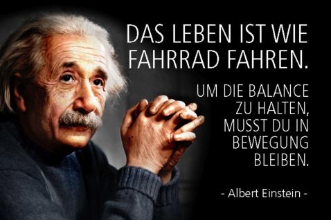 Blechschild Spruch Einstein Das Leben ist wie Fahrrad Metallschild Wanddeko 20x30 cm tin sign