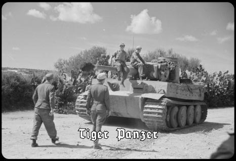 Blechschild Tiger Panzer (Afrika, fahrend) Metallschild Wanddeko 20x30 tin sign