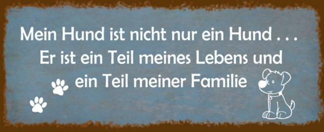 Blechschild Spruch Hund Leben Familie Metallschild 27x10 cm Wanddeko tin sign