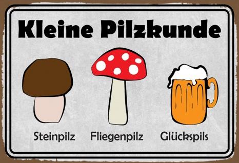 Blechschild Spruch Kleine Pilzkunde Metallschild 20x30 Wanddeko tin sign