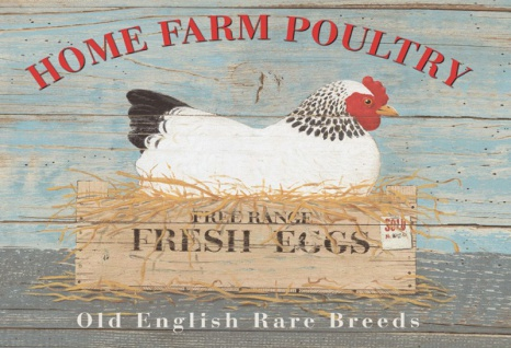 Home Farm Poultry Eggs Hühner blechschild