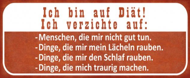 Blechschild Spruch bin auf Diät lustig Metallschild 27x10 cm Wanddeko tin sign