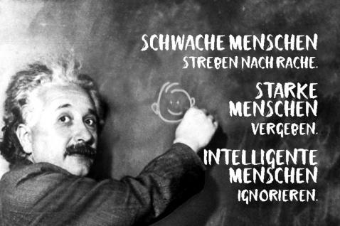 Blechschild Spruch Schwache Mensch streben Einstein Metallschild Wanddeko 20x30 cm tin sign