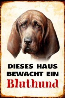 Blechschild Hund Dieses Haus bewacht ein Bluthund Metallschild Wanddeko 20x30 cm tin sign