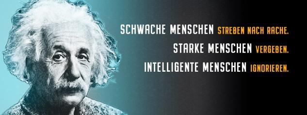 Blechschild Einstein: Schwache Menschen streben nach Rache Metallschild Wanddeko 27x10 cm tin sign