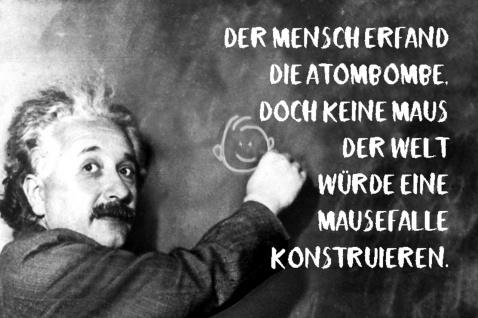 Blechschild Spruch Mensch erfand Atombombe Einstein Metallschild Wanddeko 20x30 cm tin sign