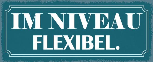 Blechschild Im Niveau flexible Metallschild Wanddeko 27x10 cm tin sign