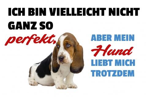 Blechschild Spruch Mein Hund liebt mich trotzdem Metallschild Wanddeko 20x30 cm tin sign