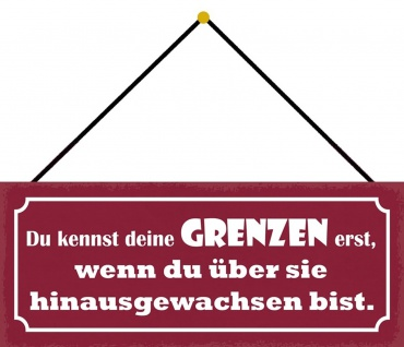Schatzmix Blechschild Spruch Du kennst deine Grenzen erst Metallschild 27x10 cm mit Kordel