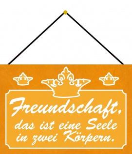 Blechschild Spruch Freundschaft = 1 Seele in 2 Körpern Deko 20x30 mit Kordel