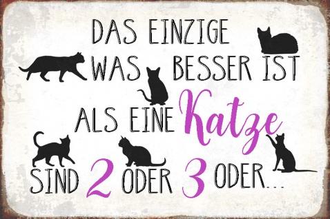 Blechschild Spruch Besser ist eine Katze oder 2 Metallschild Wanddeko 20x30 cm tin sign