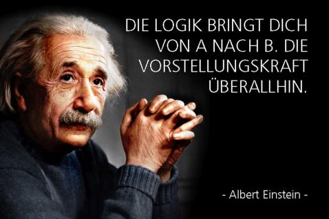 Blechschild Spruch Albert Einstein Die Logik bringt dich Metallschild Wanddeko 20x30 cm tin sign