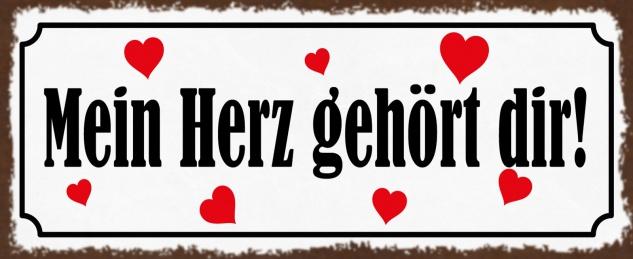 Blechschild Spruch Mein Herz gehört dir! Metallschild 27x10 cm Deko tin sign