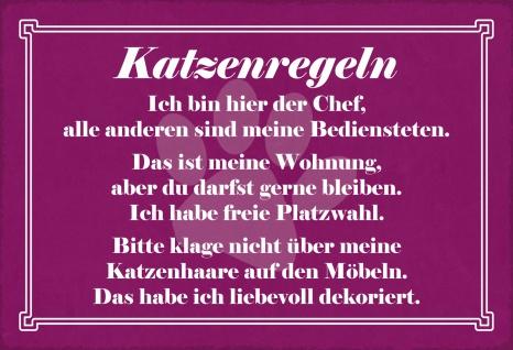 Blechschild Spruch Katzenregeln Metallschild Wanddeko 20x30 cm tin sign