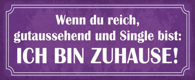 Blechschild Spruch Reich Single Zuhause Metallschild 27x10 cm Wanddeko tin sign