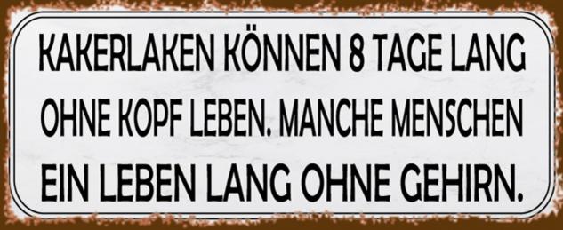 Blechschild Spruch Kakerlaken ohne Kopf Menschen? Metallschild 27x10 cm Wanddeko tin sign