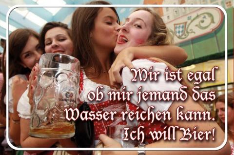 Blechschild Bier Mädels ...Wasser reichen Metallschild Deko 20x30cm tin sign