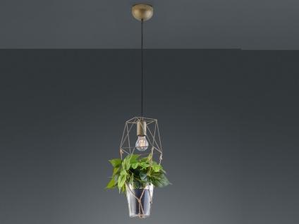 Vintage LED Pendelleuchte Drahtkorb mit Glas Hängelampe für über Esszimmertisch