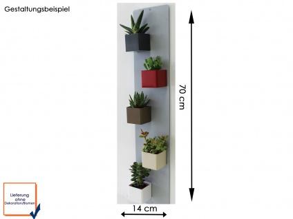 Wandaufbewahrung, Set Magnettafel und 5 Töpfe Mini Würfel Ø 6 cm, KalaMitica