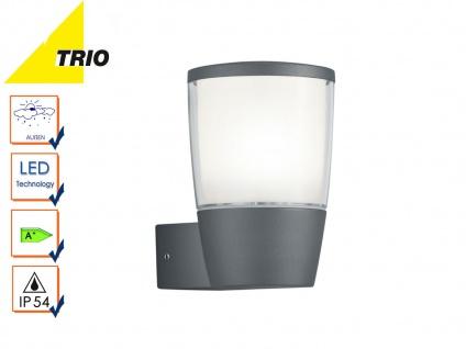 Trio LED Außenwandlampe Laterne SHANNON anthrazit, Außenbeleuchtung Haus IP54