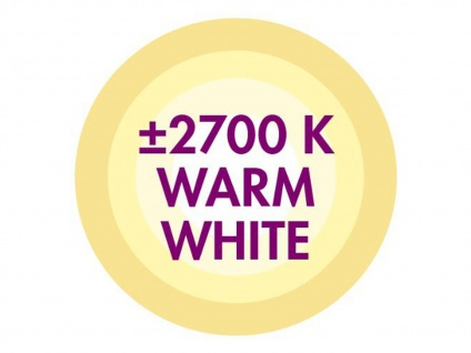 FILAMENT-LED Kerze matt E14, 2 Watt, 190 Lumen, 2700 Kelvin, warmweiß - Vorschau 3