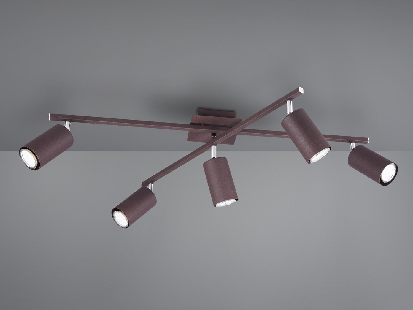 Deckenstrahler mit 20 dimmbaren LEDs für Wohnzimmer, Schlafzimmer & Küche in  Rost