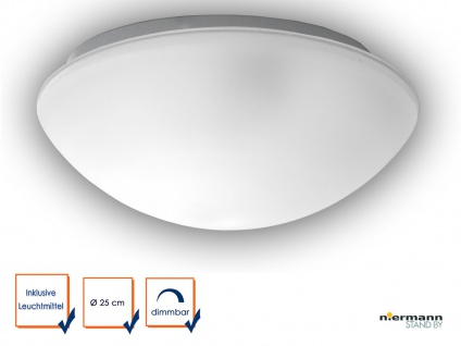 LED Flurlampe Dielenbeleuchtung Deckenschale rund Ø 25cm Glaslampe SATINIERT