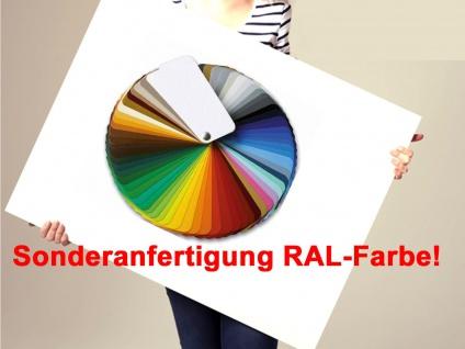 Sonder RAL Farbe für Vitalheizung Heizpaneele, Design Heizkörper Infrarot