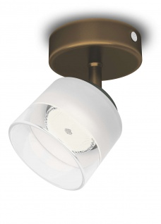 Philips LED 1 flammig Deckenleuchte Bronze 660lm Schwenkbar Spot Glas Wandleuchte