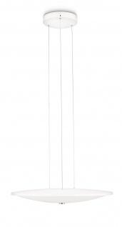 Philips LED Pendelleuchte Adour Pendel Modern Dimmbar