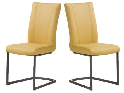 Habufa Sono Freischwinger 2er Set Stuhl mit viereckigem Vintage-Metall-Gestell für Ihr Esszimmer Schwingstuhl in Echtlederbezug oder Ledermix Handgriff an der Rückenlehne wählbar